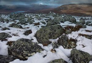 Tunturisopulin maisema on luminen kivikko, sopuli alhaalla oikealla.