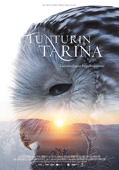Tunturin tarinan julisteessa on pöllönpää, jonka läpi heijastuu auringonvalo vaivaiskoivujen seasta tunturin laelta.